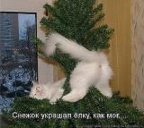 Аватар пользователя Lesnik_85